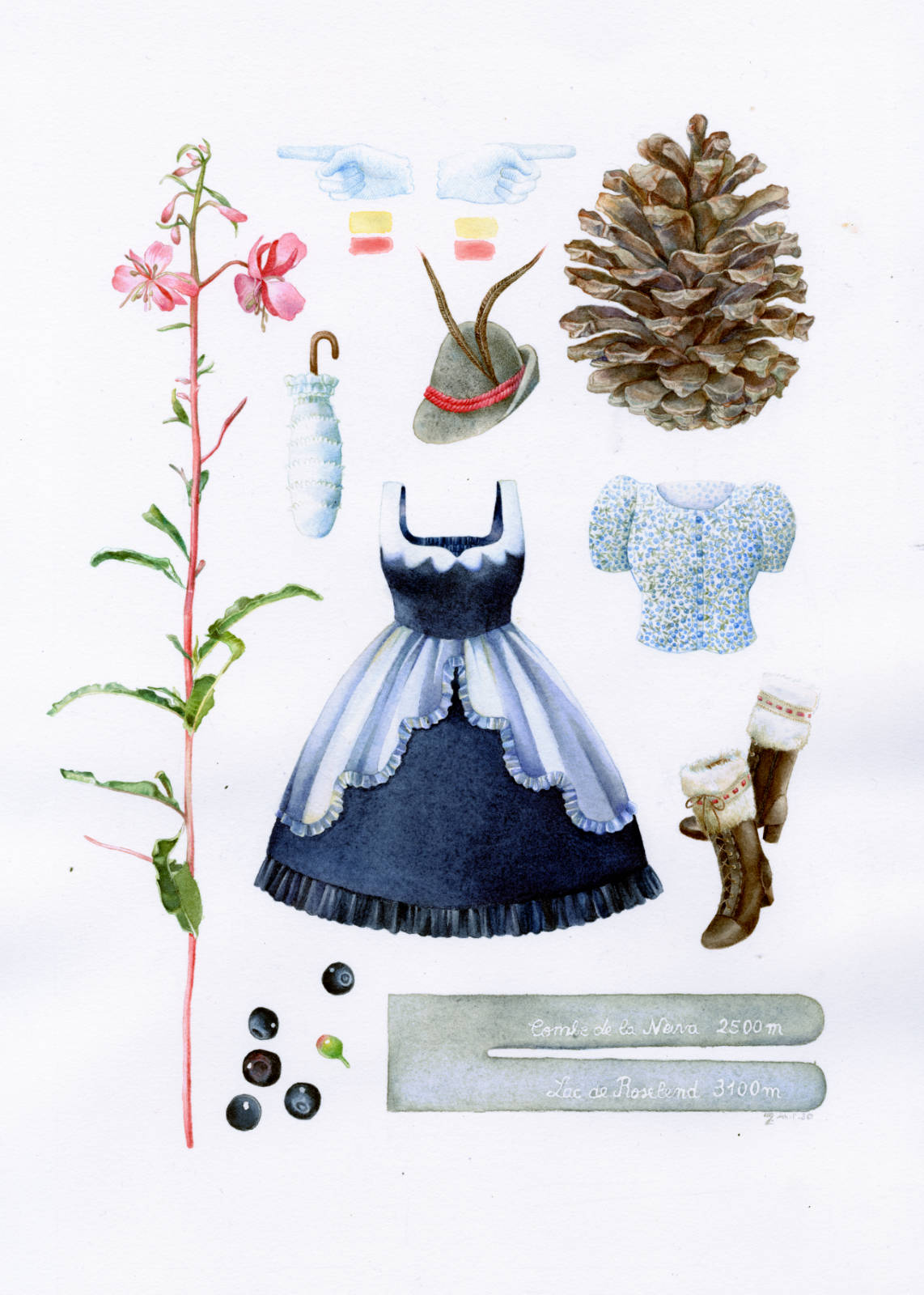 Technical illustration of a herbarium made up with fashionable lolita clothing and an alpine theme : a giant pine cone, blueberries and a blueberry print in a shirt, an austria felt hat and a pink mountain flower.