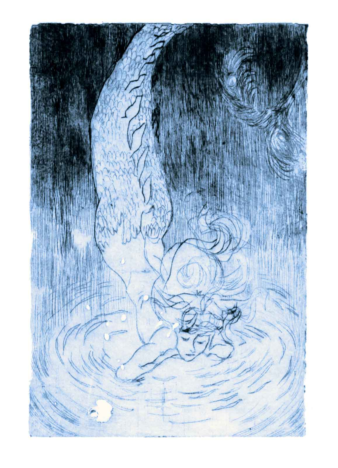 A mermaid is hovering above the under-surface of the ocean.