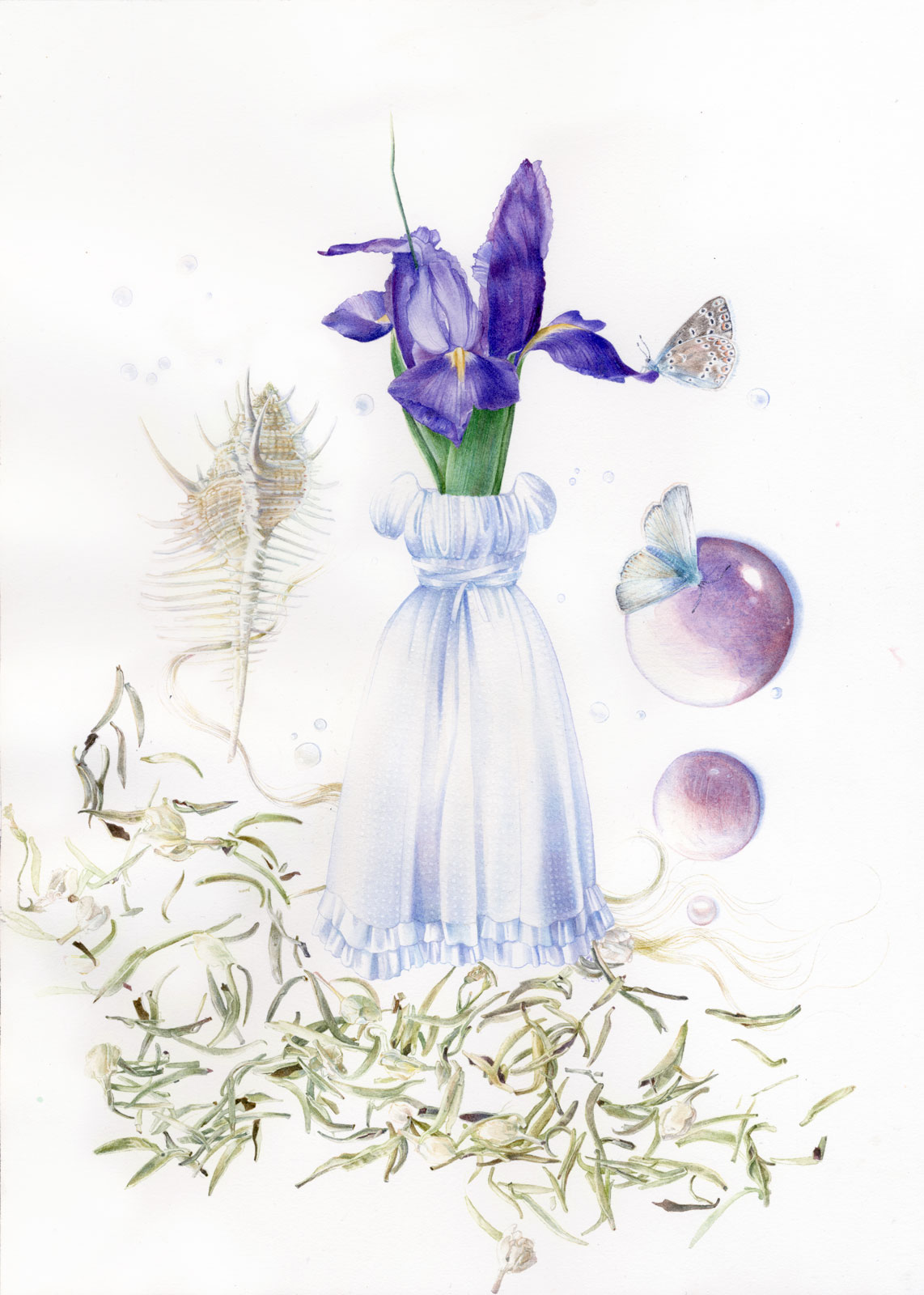 Collaborative technical illustration of a herbarium made up with fashionable lolita clothing from Moi-Même-Moitié, and inspiration drawn from Hana-Rebecca such as tea leaves, a murex, an iris, butterflies often seen near rivers, and quartz stones.