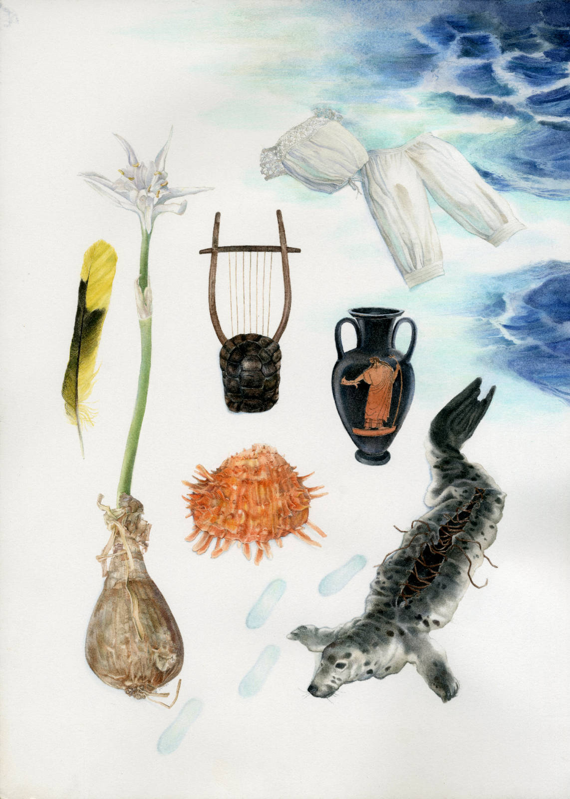 Technical illustration of a herbarium made up with fashionable lolita clothing bordering on edwardian clothing, and an agean sea theme : a shell, a sea daffodil, a greek lyra, a greek vase and a feather collected at Serifos