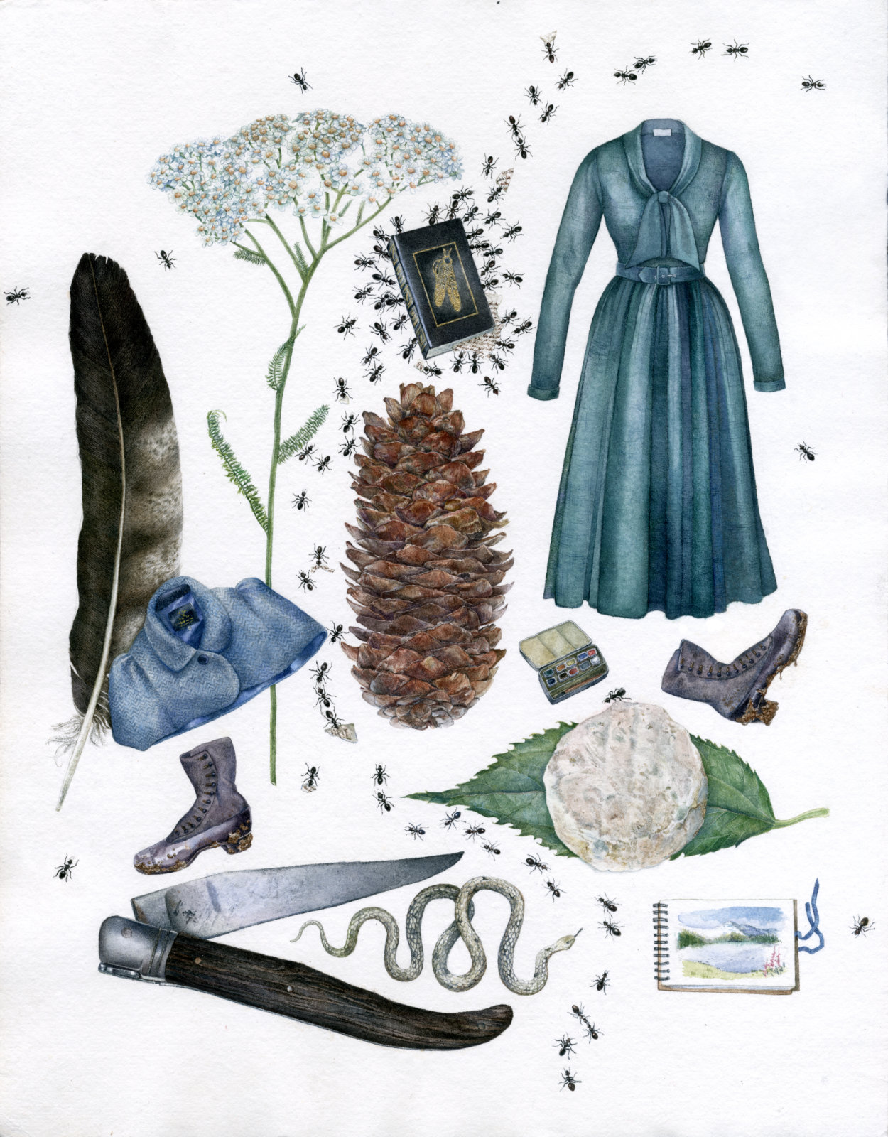 Technical illustration of a so-called herbarium revolving around walks in Nature featuring an array of natural objects such as yarrow, a hawk feather, a snake, ants, mixed with fashionable items of clothing such as a capelette from tailor Stewart Christie, a Lena Hoschek wool dress, antique boots, complete with cultural and gastronomical additions such as a copy of the Last of the Mohicans book and a picnic-worthy goat cheese with knife